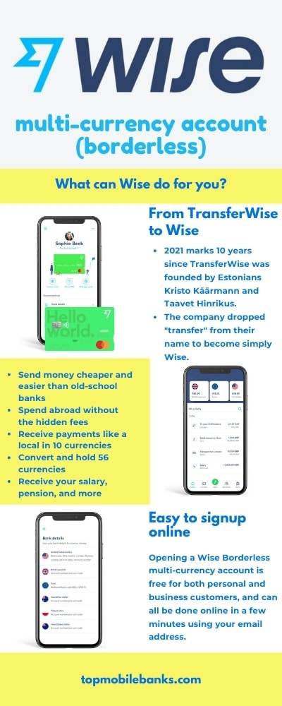 wise borderless account review