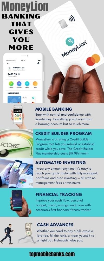 moneylion bank infographic