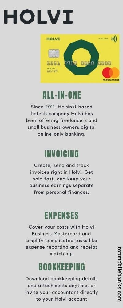 holvi review infographic